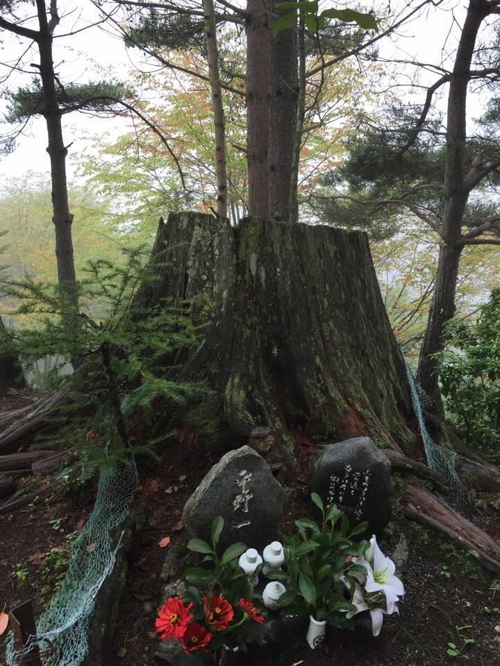 「日航機墜落事故」31年目の夏 | 福岡県議会議員 古川忠後援会事務所 オフィシャルサイト